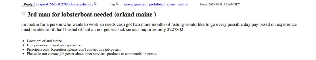 Maine lobster   SaltLife me